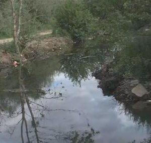 """Доброволци почистват """"пластмасовата река"""" до Елешница"""